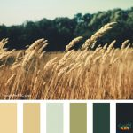 Simply Art Color Inspiration Fall Harvest